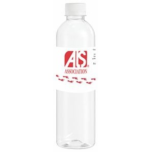 16.9 Oz. Bullet Bottled Water